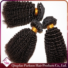 Top quality malaysian kinky curly hair weave double weft no shedding no tangle brazilian virgin hair