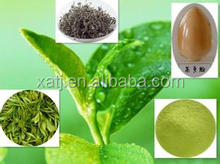Green Tea Extract/ Green Tea Catechins & decaffeinated green tea extract polyphenol