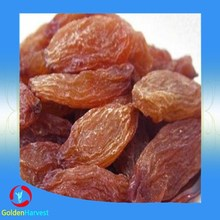 ISO certification bulk red raisin 180-240pcs/100g/ dried fruit red raisin