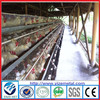 Alibaba supplier Hot Galvanized Automatic Chicken Cage/california chicken cage (Factory)