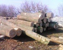 Ash round logs