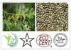 /product-gs/hemp-seed-protein-powder-70-no-excipient-hemp-protein-powder-1874292875.html