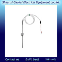 E+H Omnigrad T TST310 RTD thermometer, cable probe/ E+H Supplier