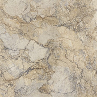 Floor and ceramic Wall Tile 60*60