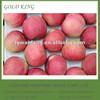 Shandong Fresh Fuji Apple Fruit for sale