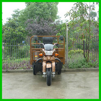 Large Load Motorized Driving Type Tricycle Cargo Trike