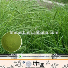 Food Supplement Herbal Extract green foods pure Barley grass powder