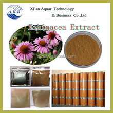 GMP manufacturer supply natural Echinacea Herb P. E 60% and free sample