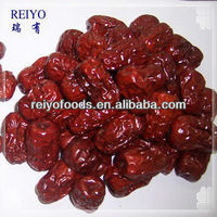 Chinese red date date fruit
