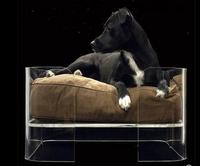 2015 Wholesale all detachable & washable pet cushion pet bed dog bed