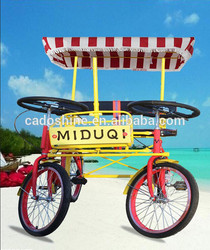 Hot selling electrical bicycle with low price