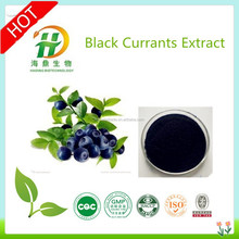 Food Grade Organic Black Currant Powder/Black Currant Seed Oil/Black Currant P.E