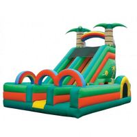 Age 3-10 years kids professional inflatable combo activity days