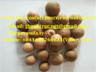 Dried Whole Betel Nut (Call: +841687264621 or Skype: anda.ty)