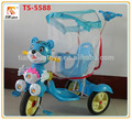 Andador triciclo con dosel/sombrilla