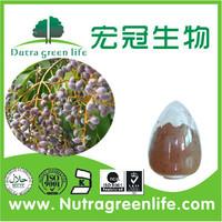 Natural Olea Europaea Extract White Powder 98% Oleanic Acid/Pure Natural Oleanolic Acid Extract