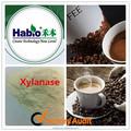 Café tratar enzima Xylanase