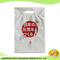 Customized Printing Die Cut Plastic Shopping Carrier Bag For Gift/ Shopping/ Garment/ Shoes/electronic Parts