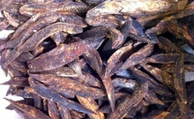 Maldivian Dried Fish