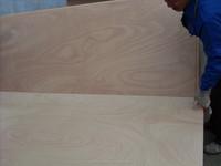 18mm waterproof plywood price