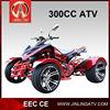 JEA-31A-09 dune buggy 300cc CVT