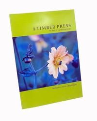 High quality printing magazine,Perfect bound magazine printing