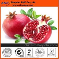 GMP&Kosher Pure Natural Pomegranate Seeds Extract Powder Ellagic acid