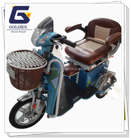 2016 new leisure scooter electric 3 wheel trike scooter price china manufacturer
