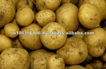Fresh Dehydrated Potato