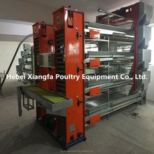 Professional galvanized automatic chicken eggs collecting for chicken farm
