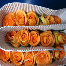 Fresh cut flowers cut rose flowers supplier from Kunming