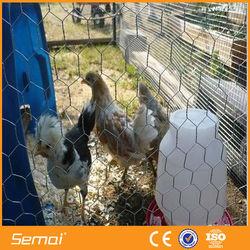 Hexagonal shape chicken cage