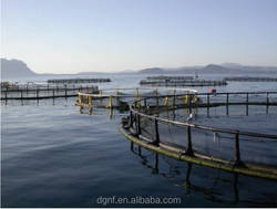 High quality used aquaculture equipment for sale fish farming cage for tilapia
