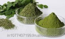 Moringa Dry Leaf Supplier in Dubai / US / UK / Singapore / Malaysia