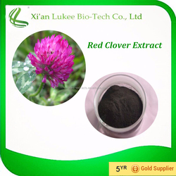 100% Natural Red Clover Extract, Red Clover Extract Powder, 4:1~20:1, Isoflavones 8%~40%