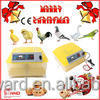 Hot Sale High Hatching Rate Full Automatic 48 Eggs Incubator Hatchery Price For Hatching Chicken/Duck/Bird