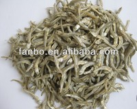 Dried Anchovy Fish Large Stock Available