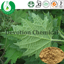 100% Natural Salic Acid 2% Nettle Root Extract