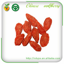 Export Food Dried Fruits: Dried Goji Berries