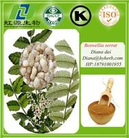Good Quality Natural Boswellia Serrata Extract Powder