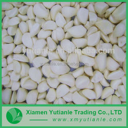 Buy wholesale direct from china pickled garlic