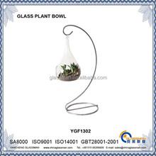 office&home decorative transparent glass plant ball