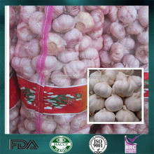 Bulk High Reputation Good Quality Fresh Garlic from China On Sale