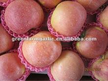 juicy red qinguan apple