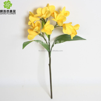 QIHAO Long stem real touch plumeria flowers