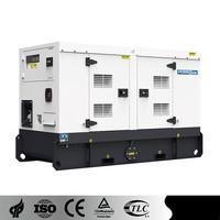 PowerLink 60Hz WPS21D6S diesel engine generator alternator