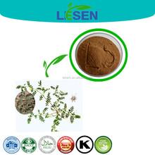 for men 100% natural tribulus terrestris p.e. Saponins 40%-90% UV
