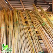 Eco-Friendly bamboo stalks in stock