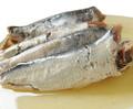 yağda konserve sardalya koruma anlık gıda