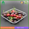 Disposible plastic food PET tray/strawberry/blueberry clamshell tray 16*16 cm